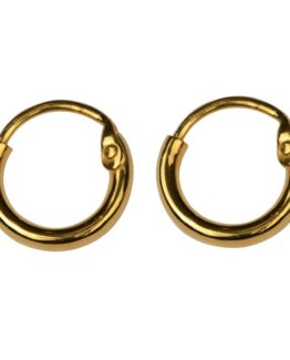 atn1024_Dangling earrings gold- hoops