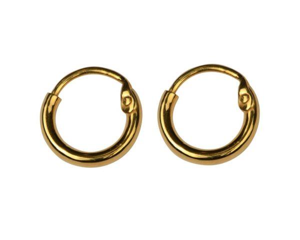atn1024_Dangling earrings gold- hoops